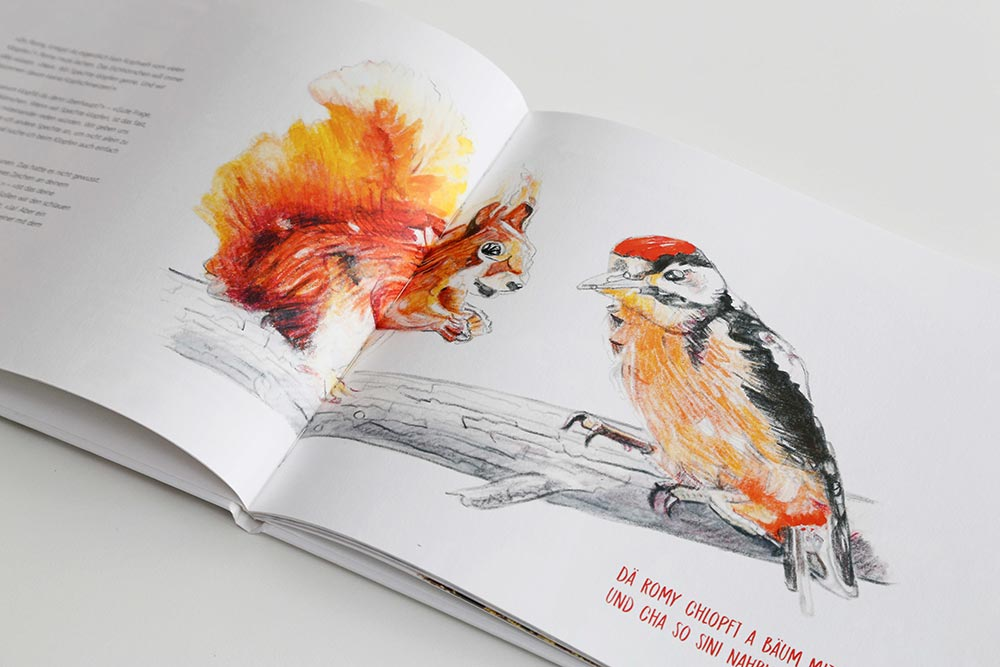 Kinderbuch Primarschule Romanshorn