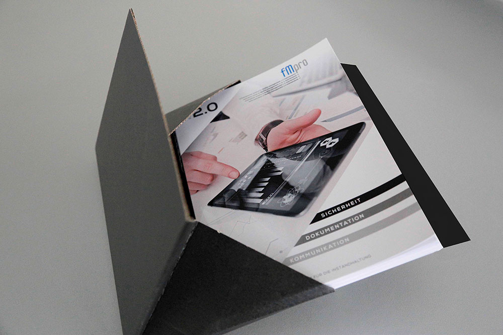 FMPro Buch Versand